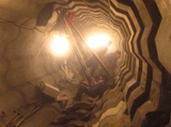 热电厂 锅炉 焚化炉及石化